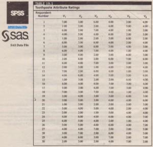 SPSS Data File